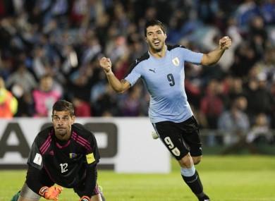 Luis Suarez celebrates after scoring for Uruguay in last night's World Cup qualifier against Venezuela.
