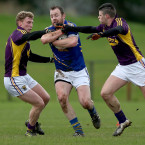 Stafford also retired in January. The Rathnew club man was one of Wicklow's biggest performers over the past decade.<span class=