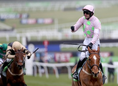 The Power and the Glory: After her 2015 heartbreak, Annie returned to win the Champion Hurdle in 2016.