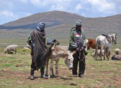 Sotho men in small village in Lesotho, Africa.