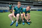 Overshadowed by Lions, but Ireland a joy to watch at tail end of historic season