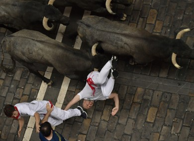 A reveller falls in front of Jose Escolar fighting bulls during the second running of the bulls at the San Fermin Festival.
