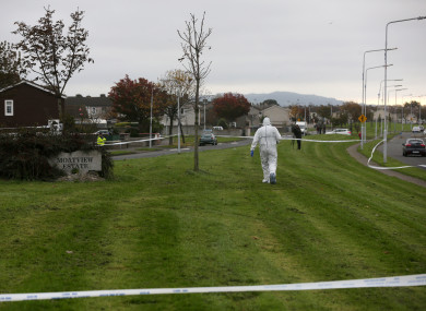 Forensic investigators examine the crime scene at Moatview Avenue.