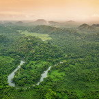 Belize is well-known for its pristine waters and coral, but the mainland is equally beautiful. These jungles are located near Belcampo Lodge.<span class=