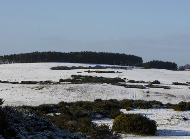 The Curragh Plains in Co Kildare yesterday.