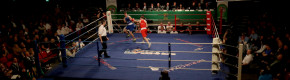 Stunning action and 13 new champions make for memorable Elite finals night at National Stadium