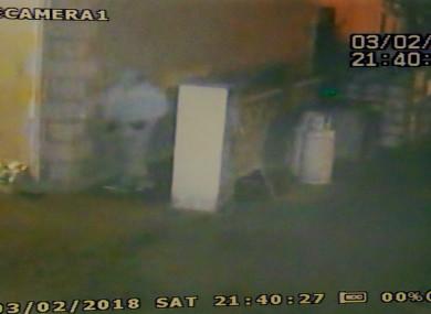 CCTV footage of a burglar in Leitrim.