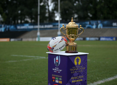The Webb Ellis Cup (file pic).