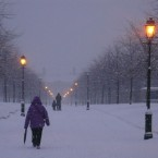 People battle the elements on the long avenue up to IMMA, winter solstice morning. Photo by Mark O Cúlar.