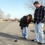 Cindy Bryant and her husband Stephen examine one of the thousands of dead birds that fell from the sky between 11pm on New Year's Eve and early New Years Day near their home in Arkansas. Scientists are still puzzling over the mysterious sudden deaths of flocks of birds and shoals of fish in America and further afield, in Britain and Norway.
