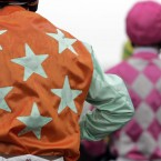 Dress up: Encourage your friends/pets to wear the silks of your favourite owner, jockey or syndicate. Whips can also be bought from specialised shops and on certain parts of the internet, I'm told. <span class=