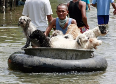 A man transports dogs on a raft made of a car tire during an evacuation after floods hit his village in Ayutthaya province, central Thailand, Wednesday, Oct. 12, 2011.