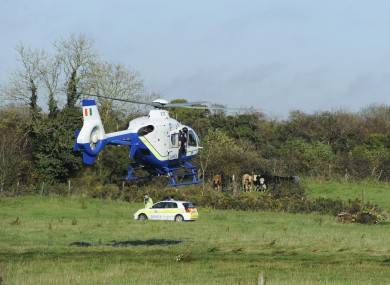 Gardaí at the scene of the discovery of Noonan's remains in Co Meath on 5 November.