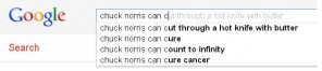 There is little Chuck Norris can't do, and Google knows it.