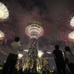 Supertrees light up the financial skyline from the newly opened Gardens By The Bay during a light and sound show in Singapore. (AP Photo/Wong Maye-E)