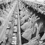 """'""""Stop working, take a deep breath, one, two, three, four,'"""" says a loud speaker. Then, you''ll see such a '""""mass yawning'"""" aimed at increasing production at the factory of Mitsumi Electric Company on the outskirts of Tokyo, Japan in 1963. (AP Photo)"""