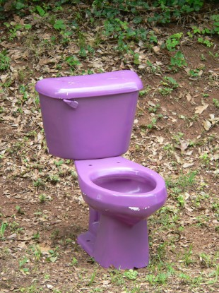 Pennsylvania Woman Fights Cancer Using Purple Toilets