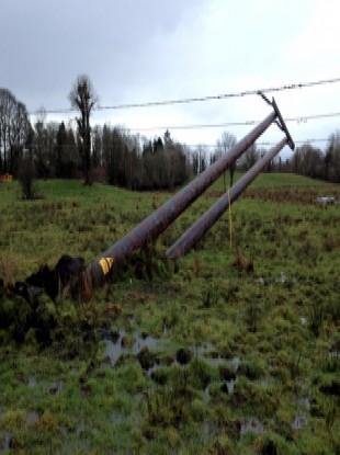 Fallen ESB pole.