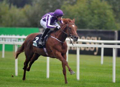 Australia was third in the 2,000 Guineas last month but the extra half-mile at Epsom is expected to suit him.