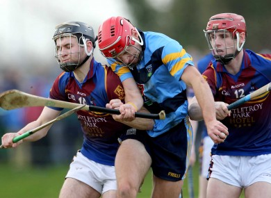 UL's John McGrath and UCD's Cillian Buckley in opposition today.