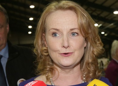 Mary Fitzpatrick was an unsuccessful candidate for Fianna Fáil in Dublin in last year's European elections.