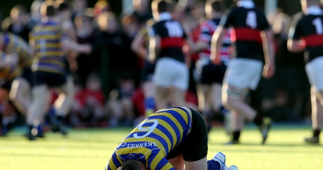Joy, despair and drama - 15 of the best pictures from Friday's schools rugby action