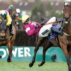 Ruby Walsh falls from Valseur Lido at the last fence while leading in the Irish Gold Cup.<span class=