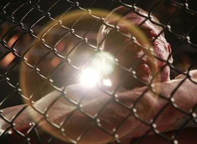 Mauricio Rua fights Dan Henderson at UFC 139.