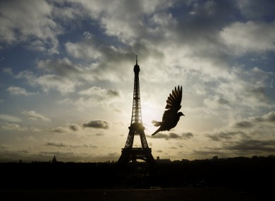 A bird flies in front of the Eiffel Tower during three days of national morning in France last November.