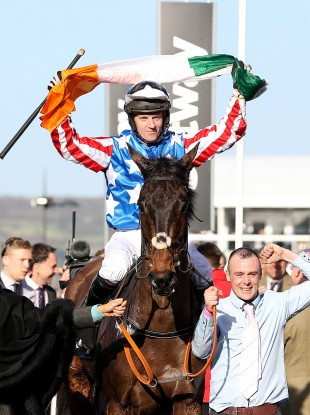 Noel Fehily celebrates his Queen Mother Champion Chase win on Special Tiara.