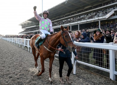 Limini won't take part in this year's Champion Hurdle.