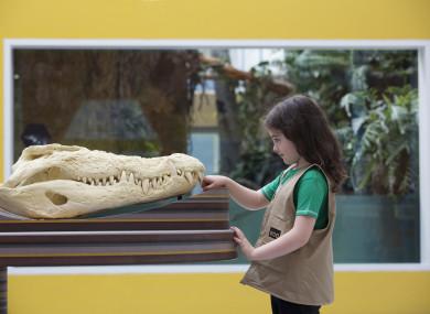Zoorassic World at Dublin Zoo