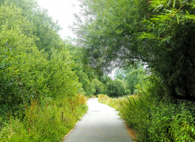 Along the Curraheen Walkway that borders Bishopstown