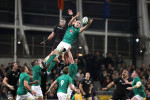How did you rate Ireland in their magnificent win over the All Blacks?