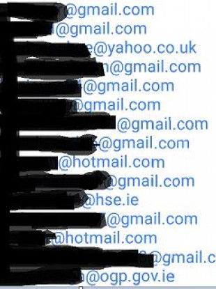 Some of the email addresses that were shared.