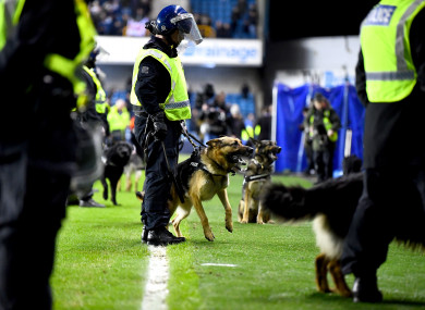 Police dogs on the pitch after the FA Cup fourth round match.