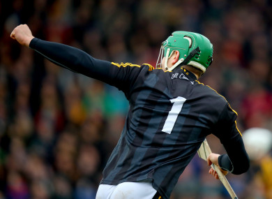 Eoin Murphy celebrates his winning point for Kilkenny.