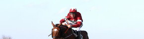 Donn McClean: Much more than a stepping stone win for rocking Tiger Roll