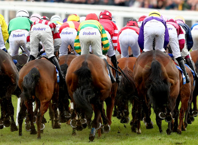 The festival gets underway at Prestbury Park on Tuesday.