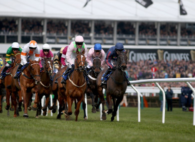 The Cheltenham Festival: 'losing one's Cheltenham virginity is a wondrous thing.'