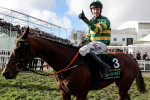 Champion Hurdle hero Espoir D'Allen has 'done enough' for season