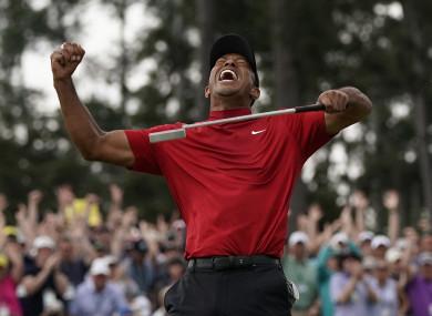 Tiger's back.