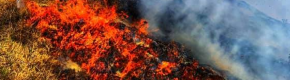 'A Holy mess': Pleas for more support as Donegal locals help battle another gorse fire