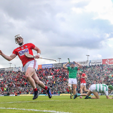 Patrick Horgan celebrates his goal for Cork against Limerick.