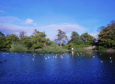 Bushy Park,Rathfarnham, Dublin, Ireland