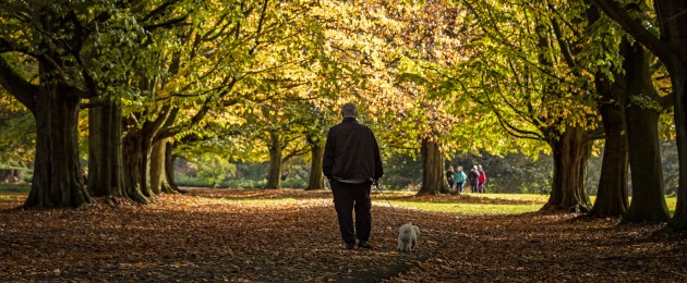 A man walks his dog through the fallen leaves in Clarkes Gardens, Allerton in Liverpool.