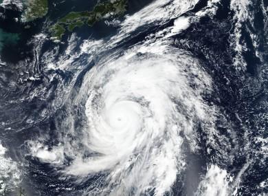 Typhoon Hagibis.