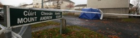 Gardaí suspect man found dead in burning car in Dublin had been shot