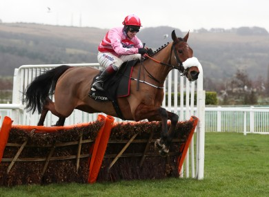 We're backing Brewinupastorm in the the Arkle Challenge Trophy Novices' Chase.