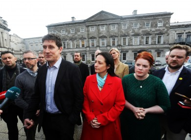 Green TDs on the plinth in Leinster House in February.